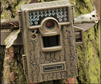 Getting the most out of your trail cameras